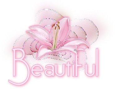beautifulvi1211.jpg
