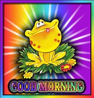 goodmorningyellowfrogsst.jpg