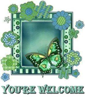 butterflyyourewelcomemcvi.jpg