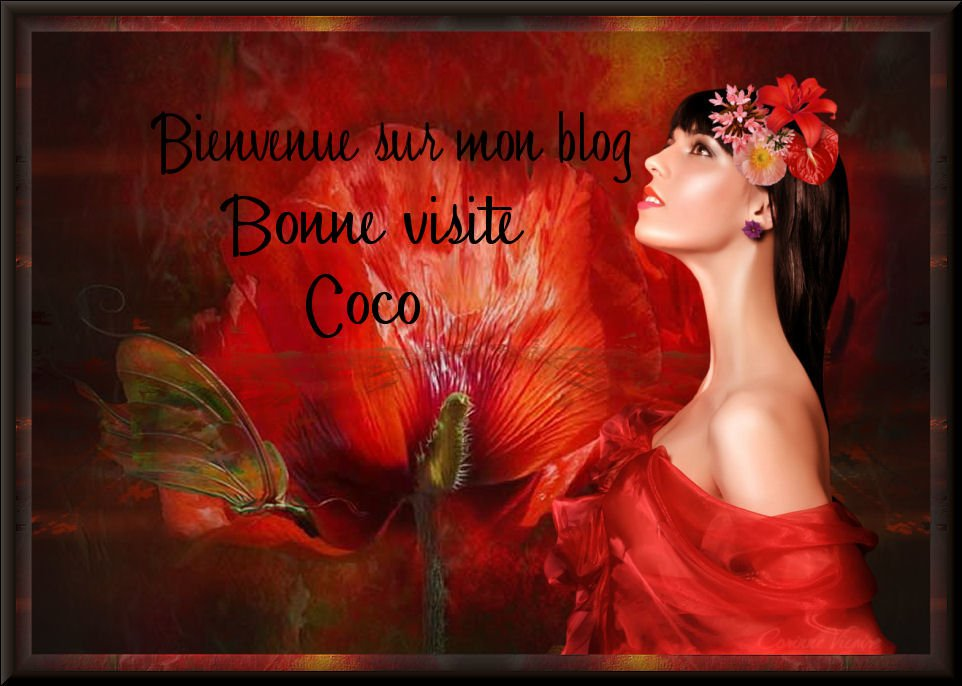 Blog Sharing Tubes-et-cr�ation-Corinne-Vicaire-cocodesiles2